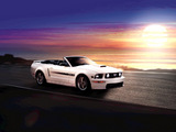 Foto 10 2009 ford mustang gt california special