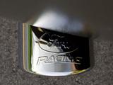Ford Mustang AV8R 2009 014