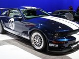 shelby gt500 professional road racer 02