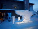 Bentley Power on Ice 1 9