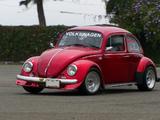 Foto Escarabajo  Clasico