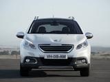 Foto Peugeot 2008   2013