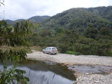 Foto Mas selva
