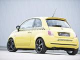 Hamman Fiat 500
